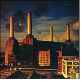 Animals (CD)