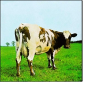 Atom Heart Mother (CD)